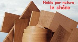 Le chêne: un matériau éco-responsable